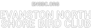 The Evanston North Shore Bird Club